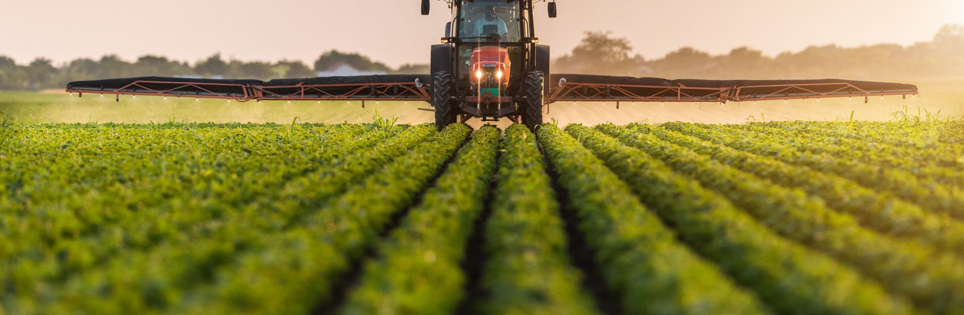 Tractor,Spraying,Pesticides,On,Soybean,Field,With,Sprayer,At,Spring